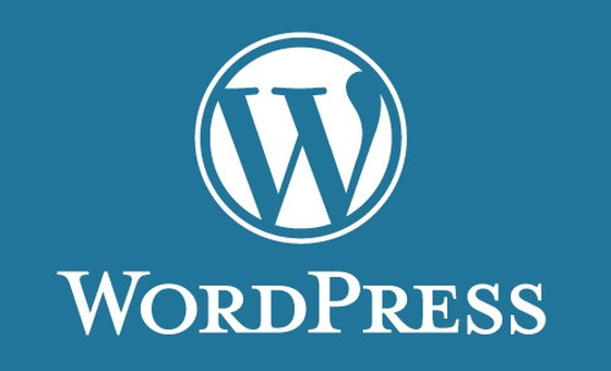 アフィリエイト初心者でもワードプレス(wordpress)を簡単に設置出来るよう、今後その詳細を記事にしていきます。