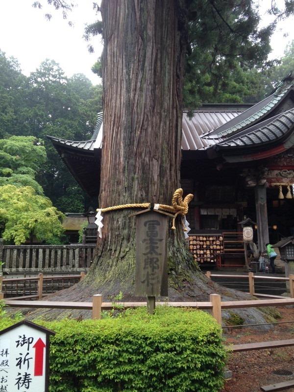 富士浅間神社と新屋山神社_714[1]