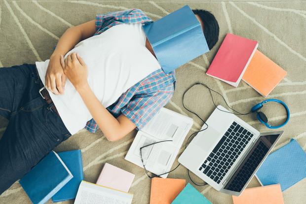 毎日勉強する